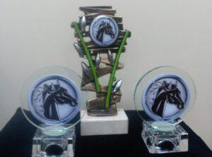 Trofeos Resina Cristal - Mario Torres - Valencia